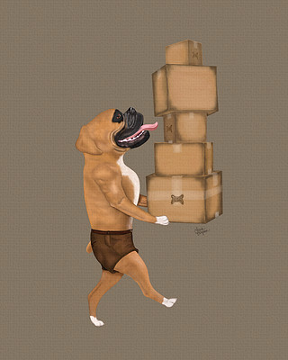 Brown Boxer delivering some packages for the Dog Parcel Service