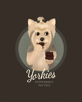 Chocolate Background Yorkie eating Peppermint Patties
