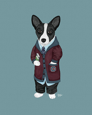 Black and White Cardigan Corgi heading to college.