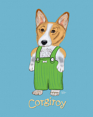 Blue Welsh Corgi Portrait