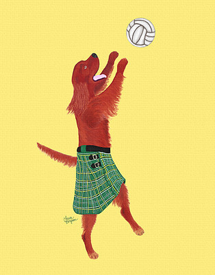 Irish Setter Playing Beach Volleyball
