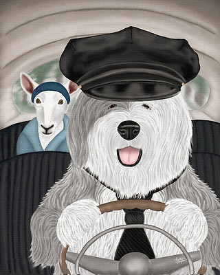 Old English sheepdog driving a sheep to the market.
