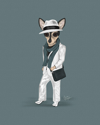 Boy Chihuahua in a fedora and a suit. A real trendsetter fashion dog.