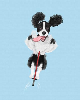 Black Springer Spaniel jumping on a pogo stick