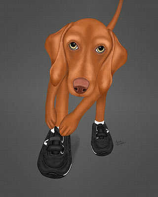 Gray painting of a Vizsla getting ready for sport. Put on those Velcro shoes!