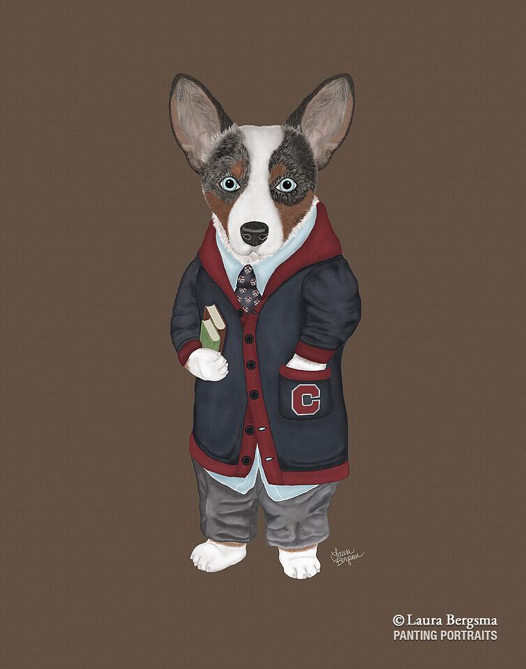 Brown Tricolor Cardigan Corgi dressed for school.