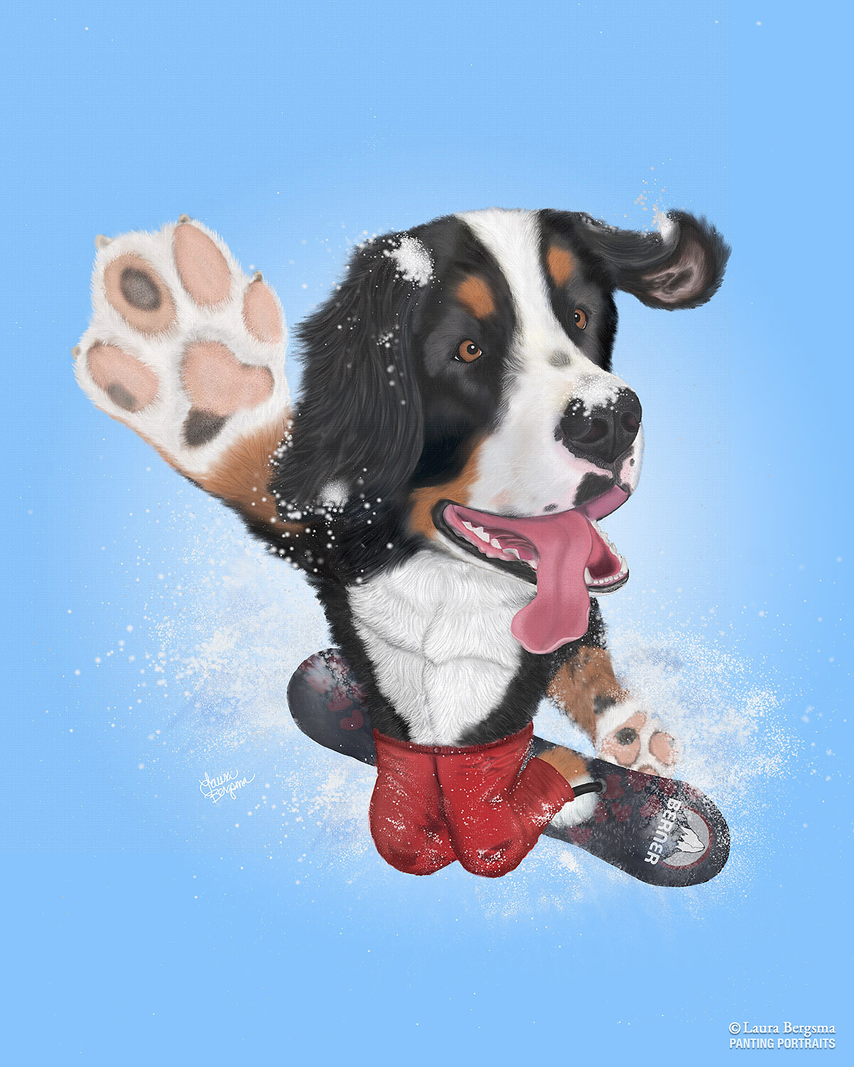 Bernese Mountain Dog Riding a Snowboard